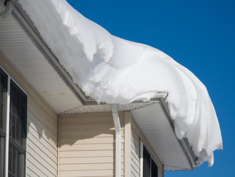 winter-damage